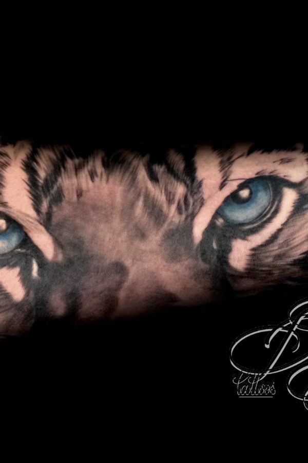 eye of tiger daricktattoos