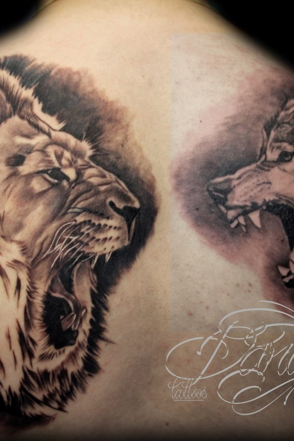 lion vs wolf daricktattoos